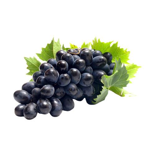 anggur hitam buah pasar lampung