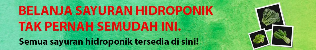 Sayur hidroponik Lampung